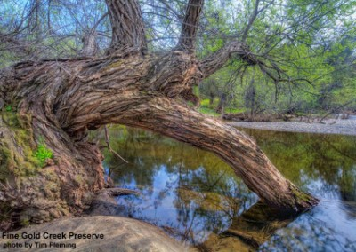 fg-oak-creek-tfleming-100322