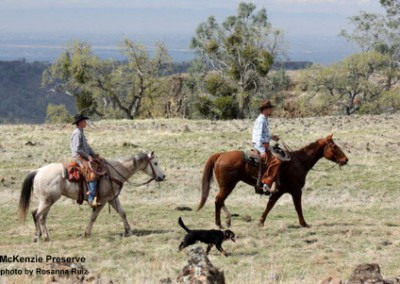 mck-cowboys-rruiz-120315