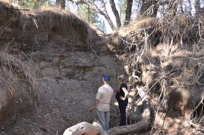 SFC begins the long awaited restoration of Bean Creek Meadow this week!