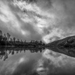 Amphibian Bio-Blitz on Stockton Creek @ Stockton Creek Nature Preserve